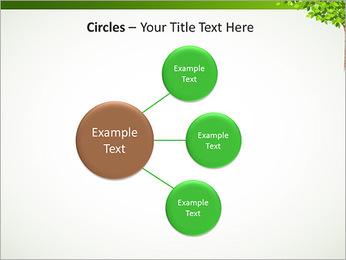 Dessin d'arbre Modèles des présentations  PowerPoint - Diapositives 59