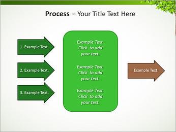 Dessin d'arbre Modèles des présentations  PowerPoint - Diapositives 65