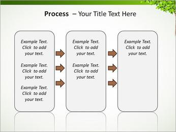 Dessin d'arbre Modèles des présentations  PowerPoint - Diapositives 66