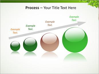 Dessin d'arbre Modèles des présentations  PowerPoint - Diapositives 67