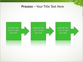Dessin d'arbre Modèles des présentations  PowerPoint - Diapositives 68
