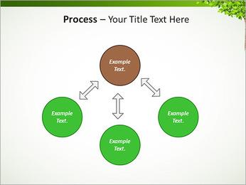 Dessin d'arbre Modèles des présentations  PowerPoint - Diapositives 71