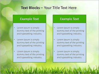 L'herbe verte fraîche Modèles des présentations  PowerPoint - Diapositives 37