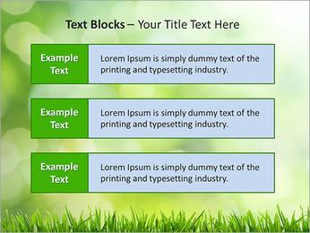 L'herbe verte fraîche Modèles des présentations  PowerPoint - Diapositives 38