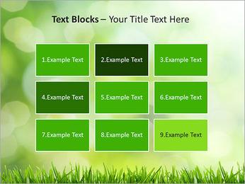 L'herbe verte fraîche Modèles des présentations  PowerPoint - Diapositives 48