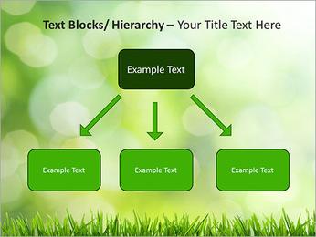 L'herbe verte fraîche Modèles des présentations  PowerPoint - Diapositives 49