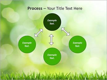 L'herbe verte fraîche Modèles des présentations  PowerPoint - Diapositives 71