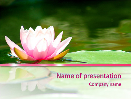 Lotus Flower Powerpoint Template Backgrounds Google Slides Id