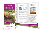 Green Grass Cover Brochure Templates