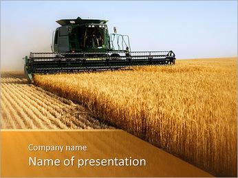 Récolte de blé Collection Modèles des présentations  PowerPoint