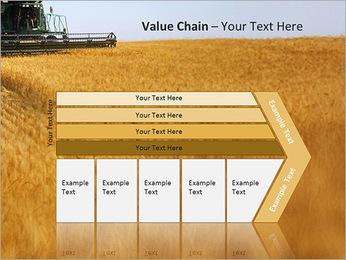 Шаблоны пшеница для презентаций powerpoint