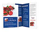 0000040154 Brochure Templates