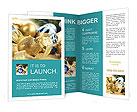 0000040199 Brochure Templates