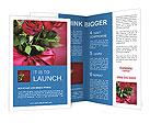 0000040566 Brochure Templates