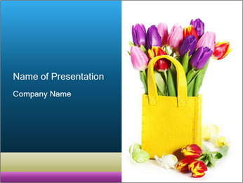 0000040798 PowerPoint Template