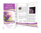 0000041307 Brochure Template