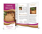 0000041388 Brochure Templates