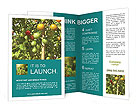 0000041974 Brochure Templates