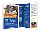 0000042488 Brochure Templates