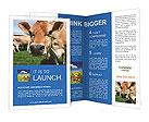 0000043068 Brochure Templates