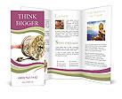 0000043257 Brochure Templates