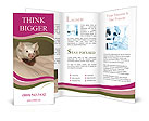 0000043393 Brochure Templates