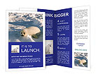 0000043886 Brochure Templates
