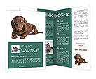 0000044152 Brochure Templates
