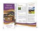 0000044456 Brochure Templates