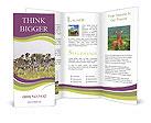 0000044484 Brochure Templates