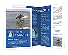 0000044488 Brochure Templates