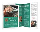 0000044645 Brochure Templates