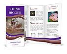 0000045317 Brochure Templates
