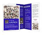 0000046057 Brochure Templates