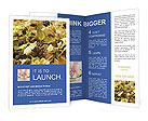 0000046729 Brochure Templates