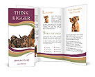 0000046848 Brochure Templates