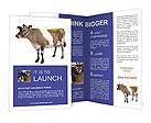 0000047586 Brochure Templates