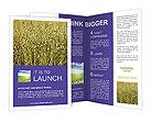 0000047779 Brochure Templates
