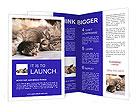 0000047862 Brochure Templates