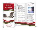 0000047884 Brochure Templates