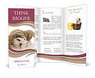 0000047916 Brochure Templates