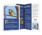 0000048096 Brochure Templates