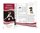 0000048271 Brochure Templates