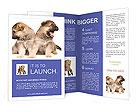 0000048450 Brochure Templates