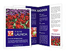 0000048531 Brochure Templates