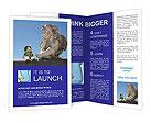 0000048711 Brochure Templates