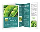0000049209 Brochure Templates