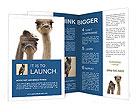 0000049375 Brochure Templates