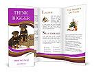 0000049895 Brochure Templates