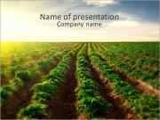 Agriculture Modèles des présentations  PowerPoint